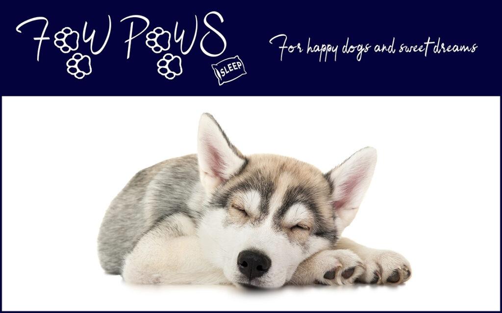 Visit FawPaws Sleep